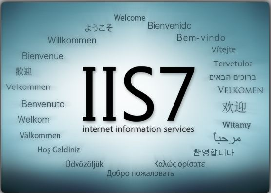 Exporting and Importing Sites and App Pools from IIS 7 and 7 5 |